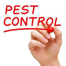 Termite and Past Control, Sacramento CA
