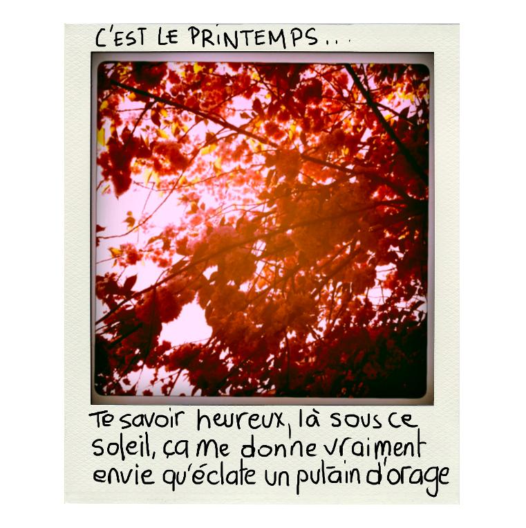 Polaprintemps_edited.jpg