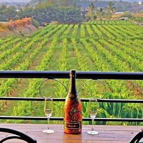 Weekend Getaway to Nashik. Land of Vineyards!
