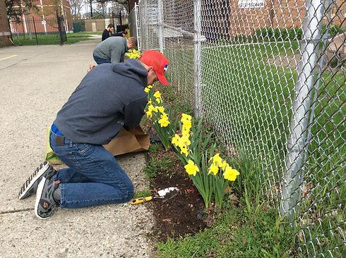 Spring Cleanup 1 (2).jpg