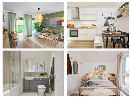 Take a sneak peek of our new show homes…