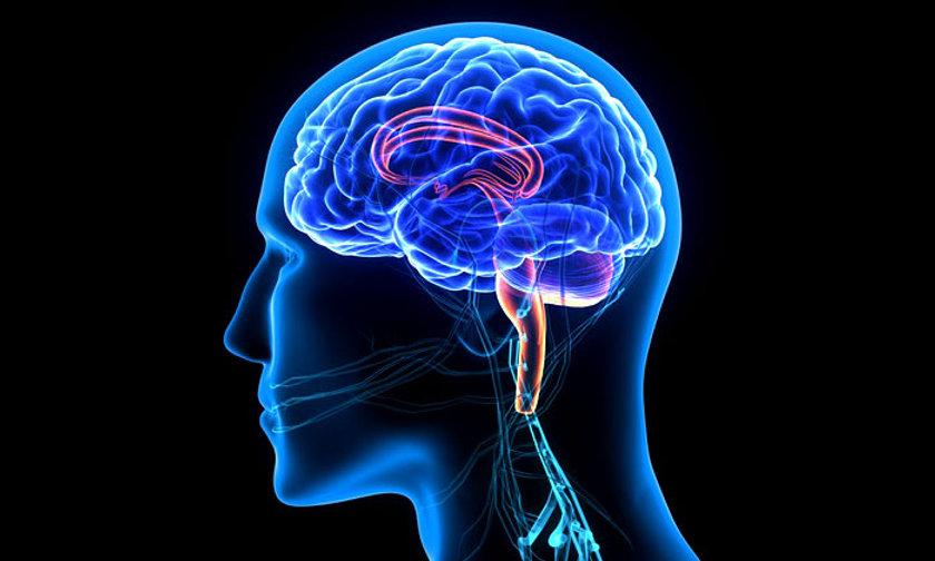 how does muscle memory work.jpg