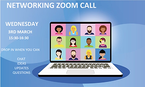 zoom call MArch - website.png