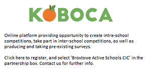 Koboca Website.png