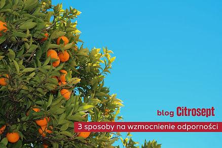 citrosept 2.jpg