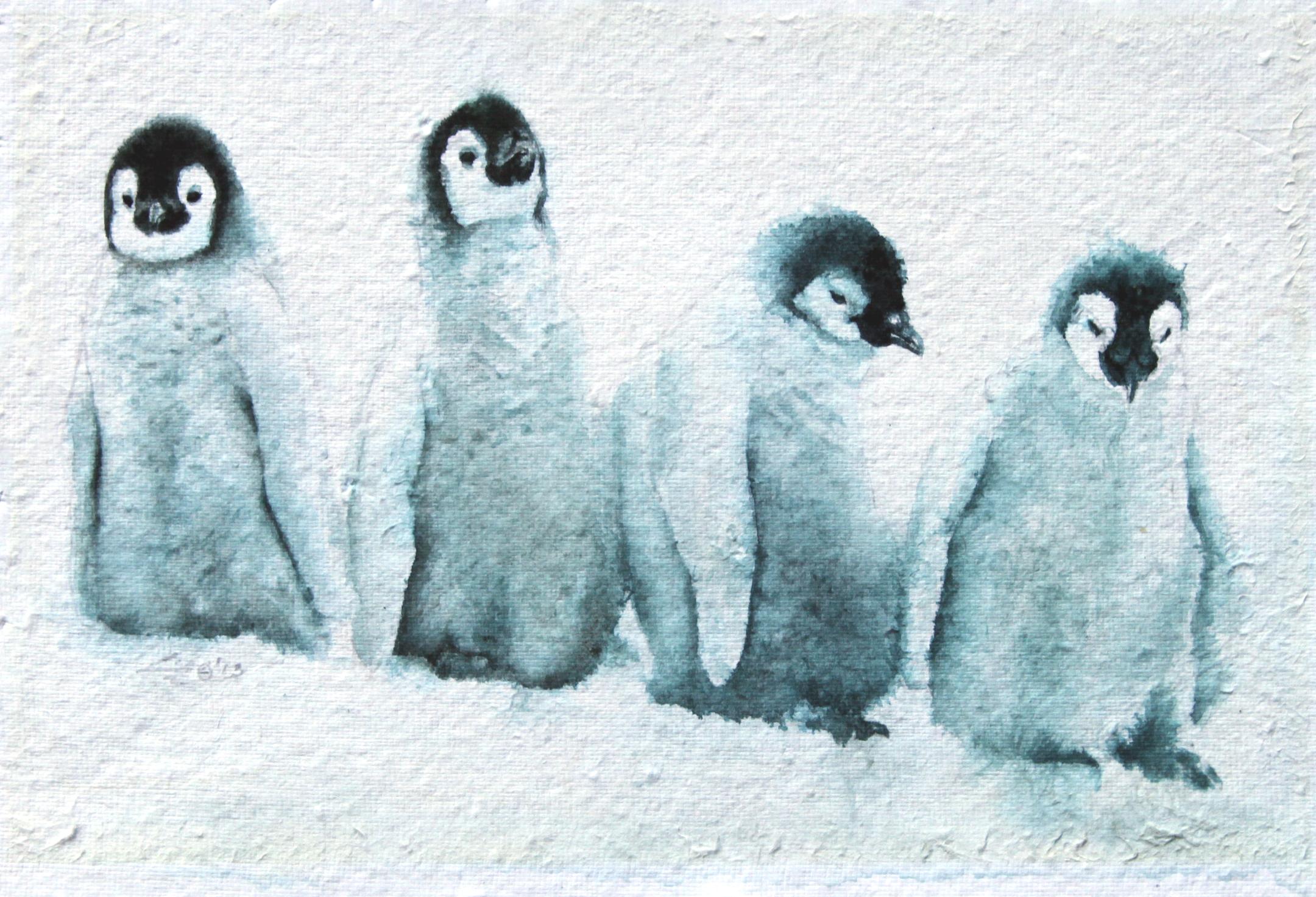 """""""Penguin Study"""""""