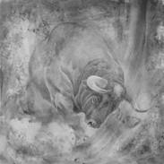 Toro de Lidia 6 8 x 8.jpg