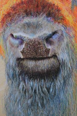 Blue Beard (Detail)