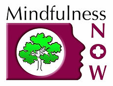 Mindfulness Now Logo.jpg