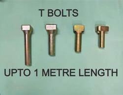 T BOLTS