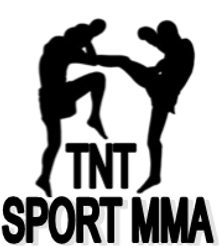 Sport MMA logo png.png