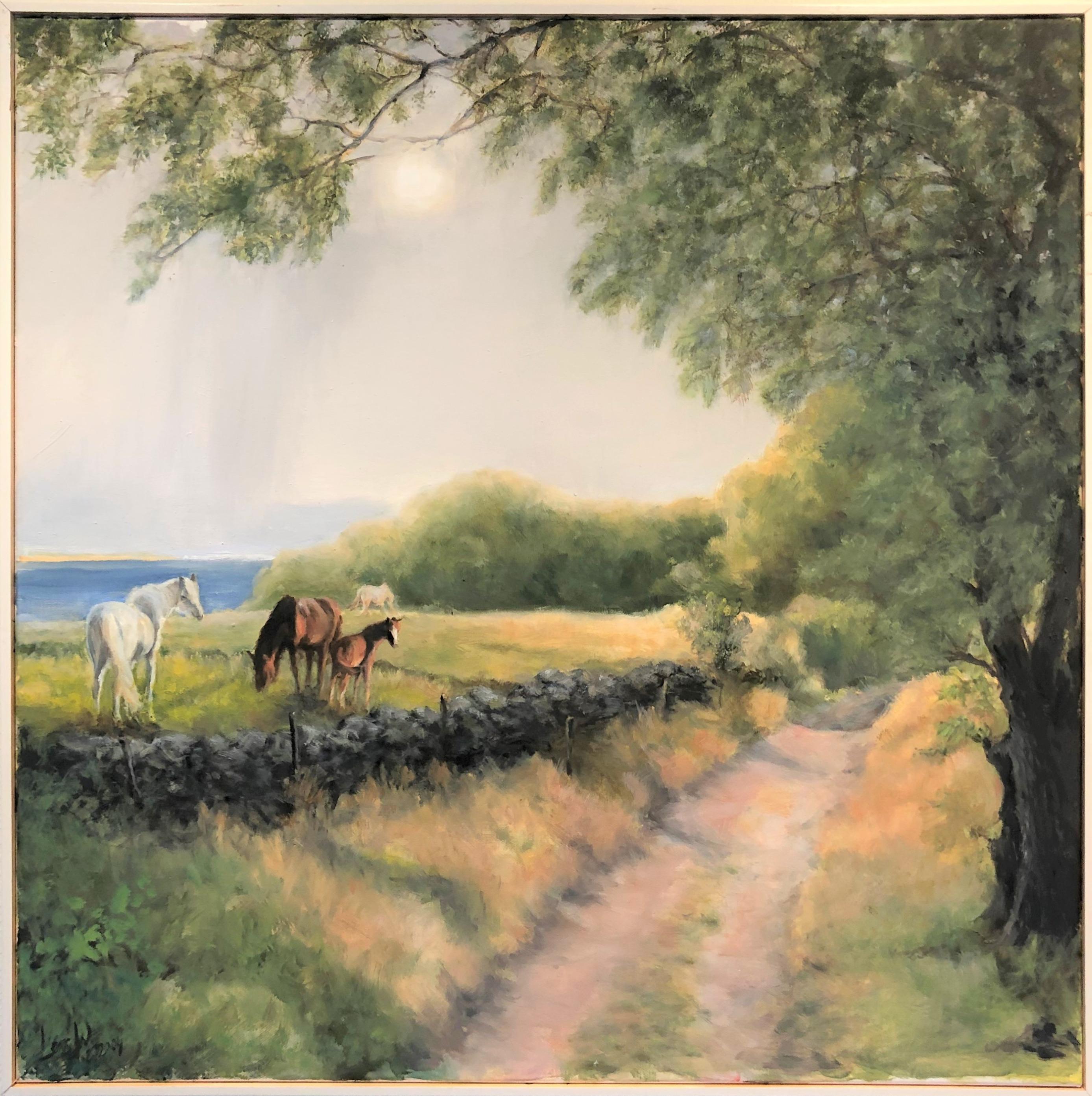Hästhagarna Ängelsbäckstrand Skåne