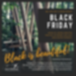 BLACK FRIDAY-7.png