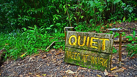 Picture of a sign saying 'Quiet - trees at work'.