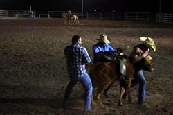 rodeo_edited