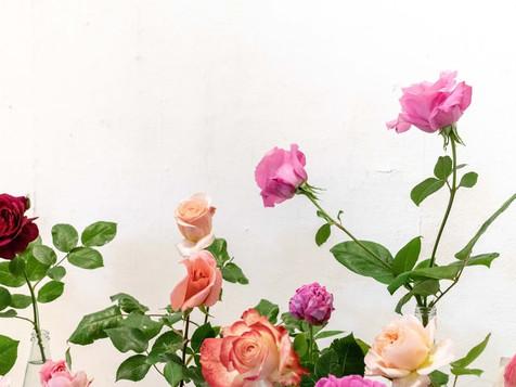 Pararse a oler las rosas