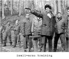 Small-arms-training.jpg