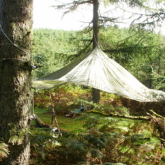 Woodland parachute.jpg
