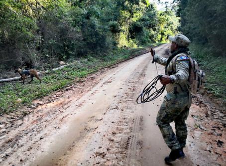 Tracking Dog Training For Belize Rangers