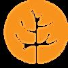 SFN logo orange.png