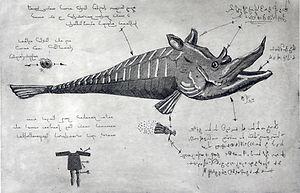 fauna from fukushima, aquatinta, etching, eduardo lara printmaking