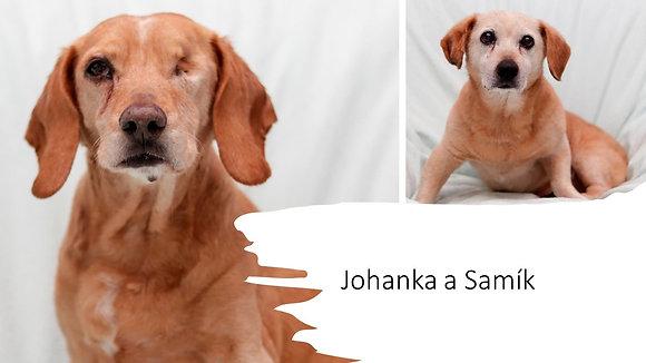 Johanka a Samík