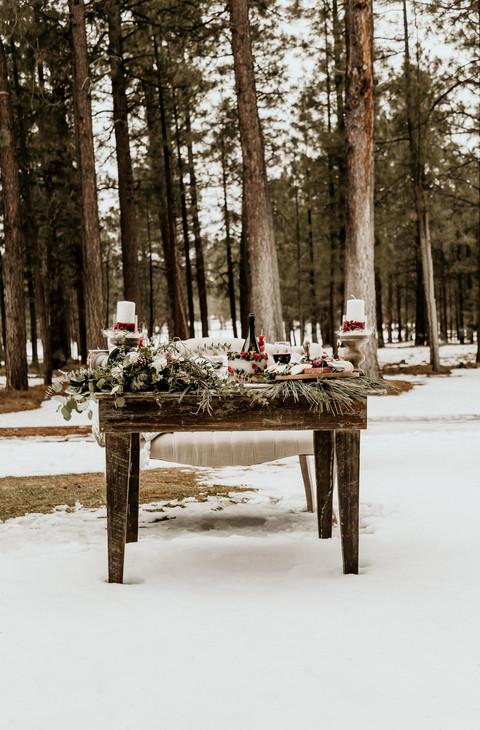 Romantic Winter Forest Elopement_Melissa