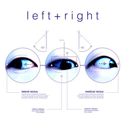 Left + Right