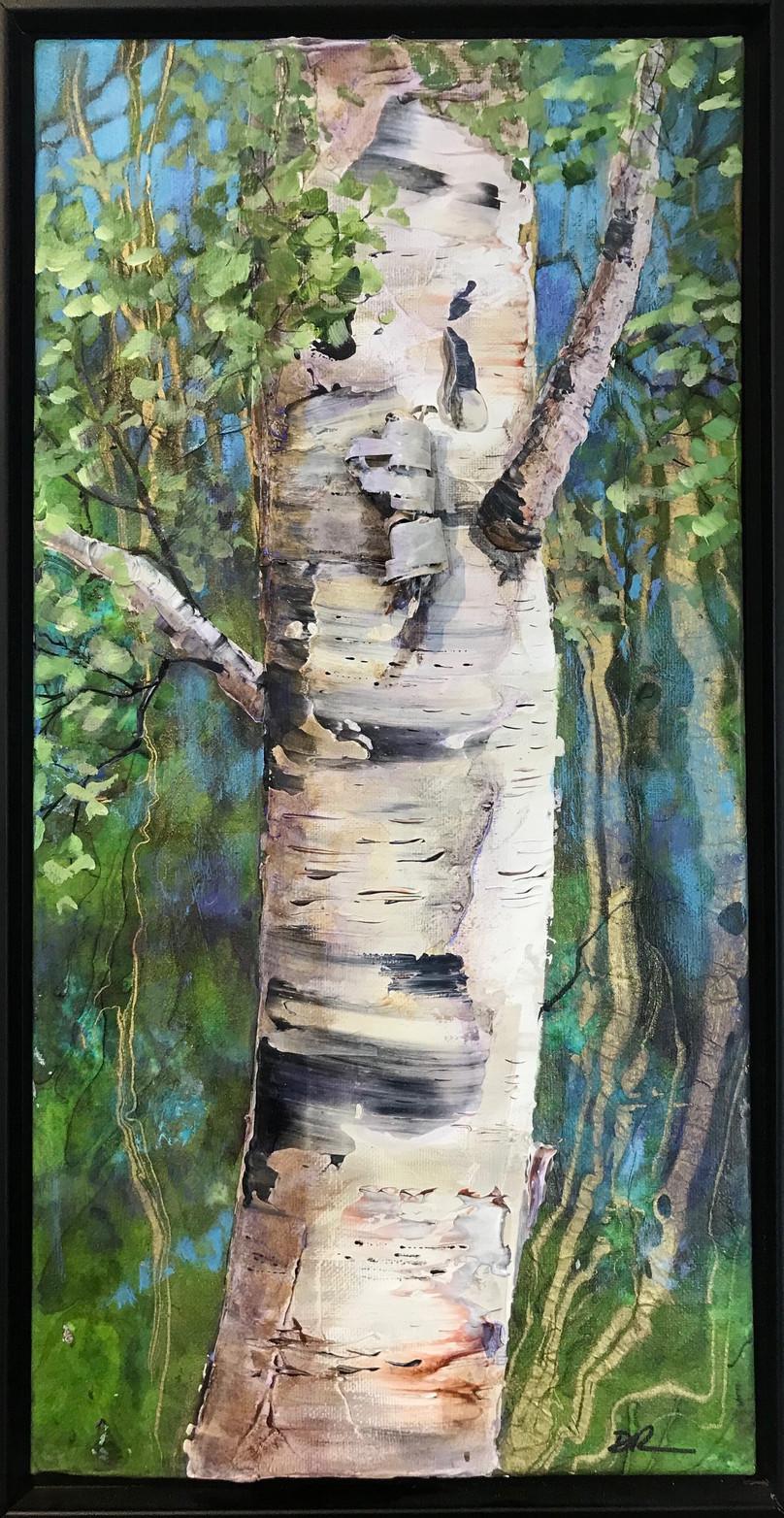 Birch Tree III