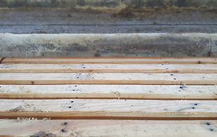 griglie in legno cuccette bovine mucche vacche vacche da latte farmidea