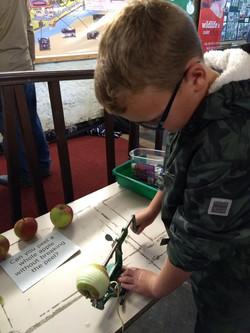 Using the apple peeler