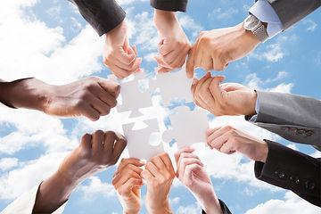 Hands Diversity.jpg