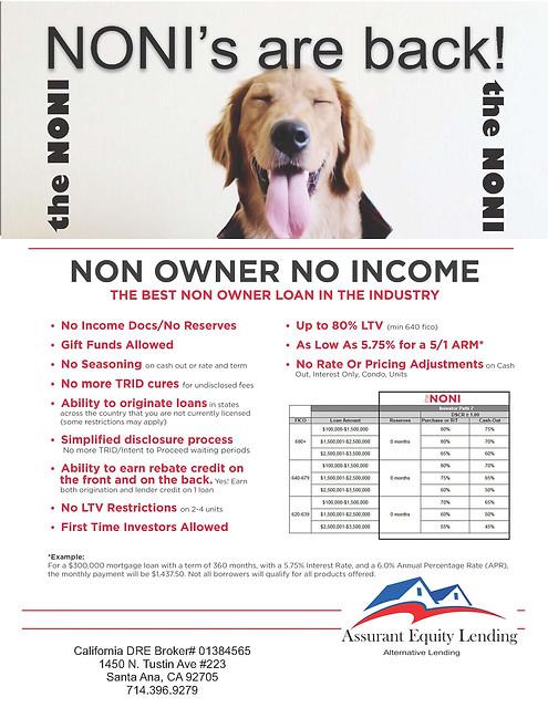 Non Owner No Income