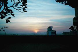 Morning Mauve