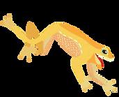 Coqui Yellow Flip.png
