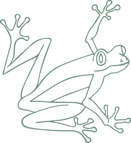 Coqui Green Web.png