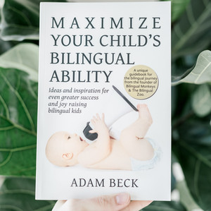 Book Review: Maximize Your Child's Bilingual Ability