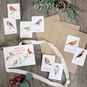 DIY Winter Counting Craft
