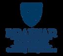 Braemar Logo.png