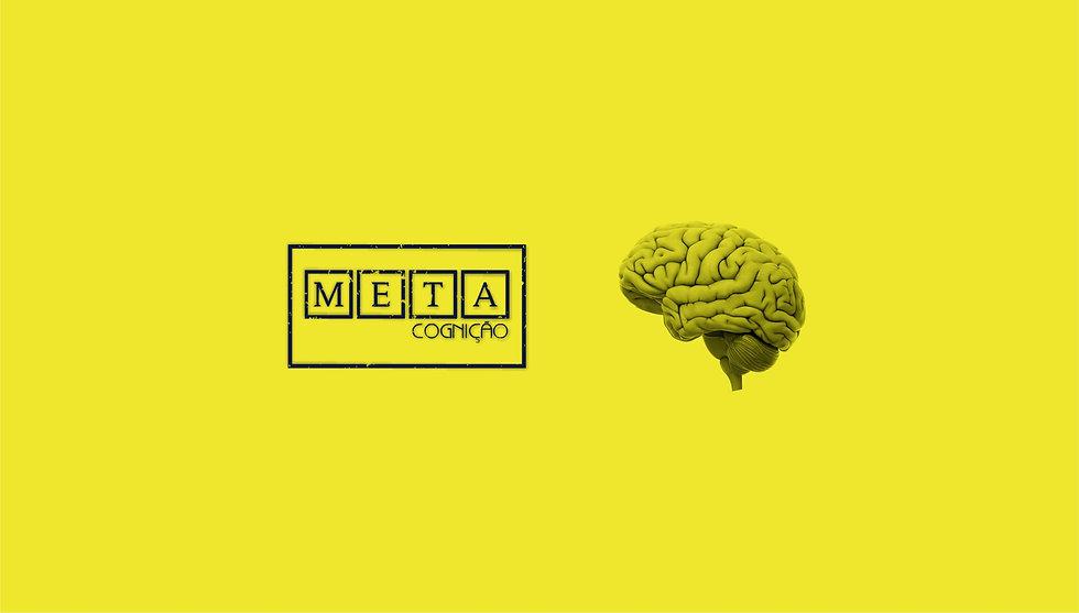 Home META 2.jpg