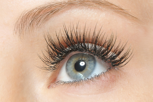 Lash Extension Course