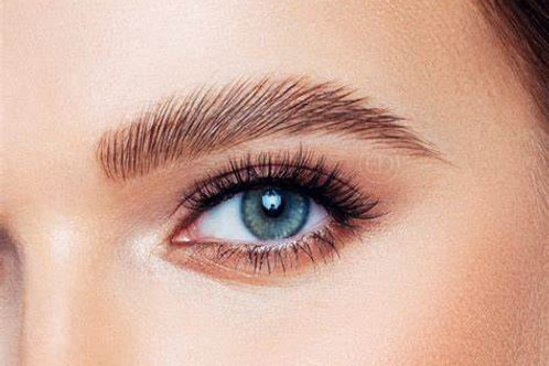 Brow Lift Course
