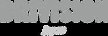 logo_drivision_210328.png