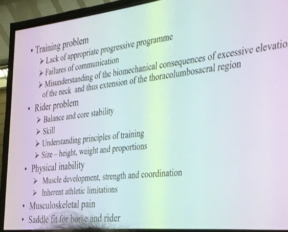 poor performance, equine orthopaedics, with a particular interest in poor performance and subtle and complex lameness in sport horses.