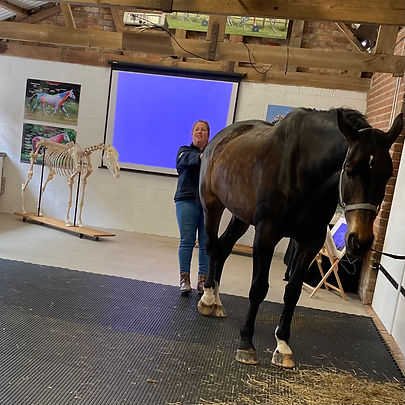 jessica_limpkin_equine_massage_therapy_worcester_worcestershire_horses_inside_out_pilates_