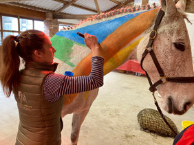 PAINTING HORSES - A DAY WITH GILLIAN HIGGINS, HORSES INSIDE OUT