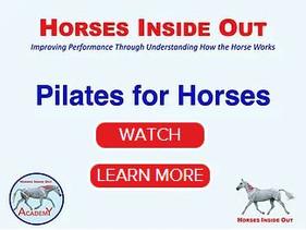 PILATES FOR HORSES - THE WEBINAR