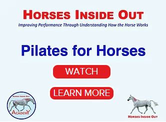 Pilates for horses, Horses Inside Out academy, webinar