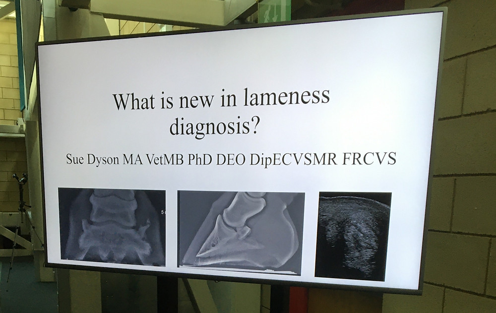What's is new in lameness diagnosis Dr Sue Dyson