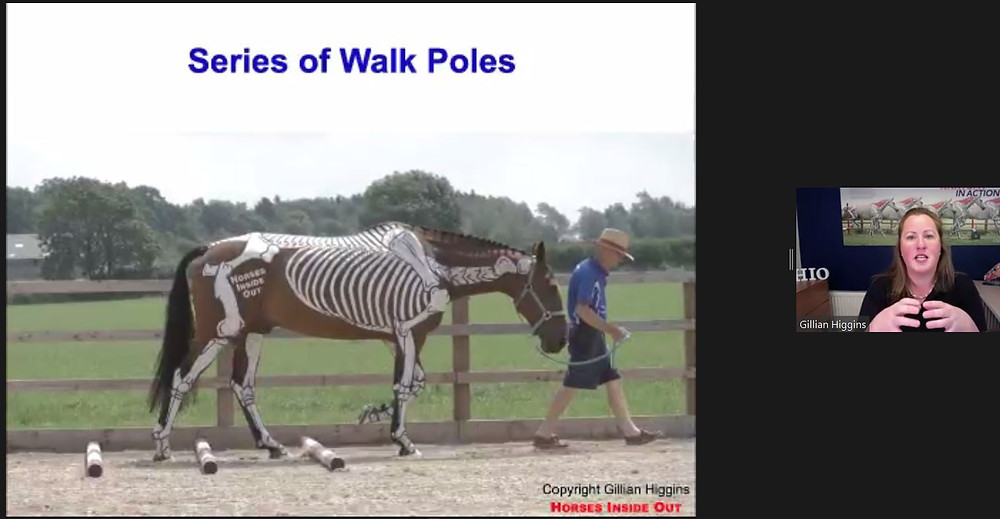 raised walk poles, biomechanics, webinars, poles for posture, Gillian Higgins